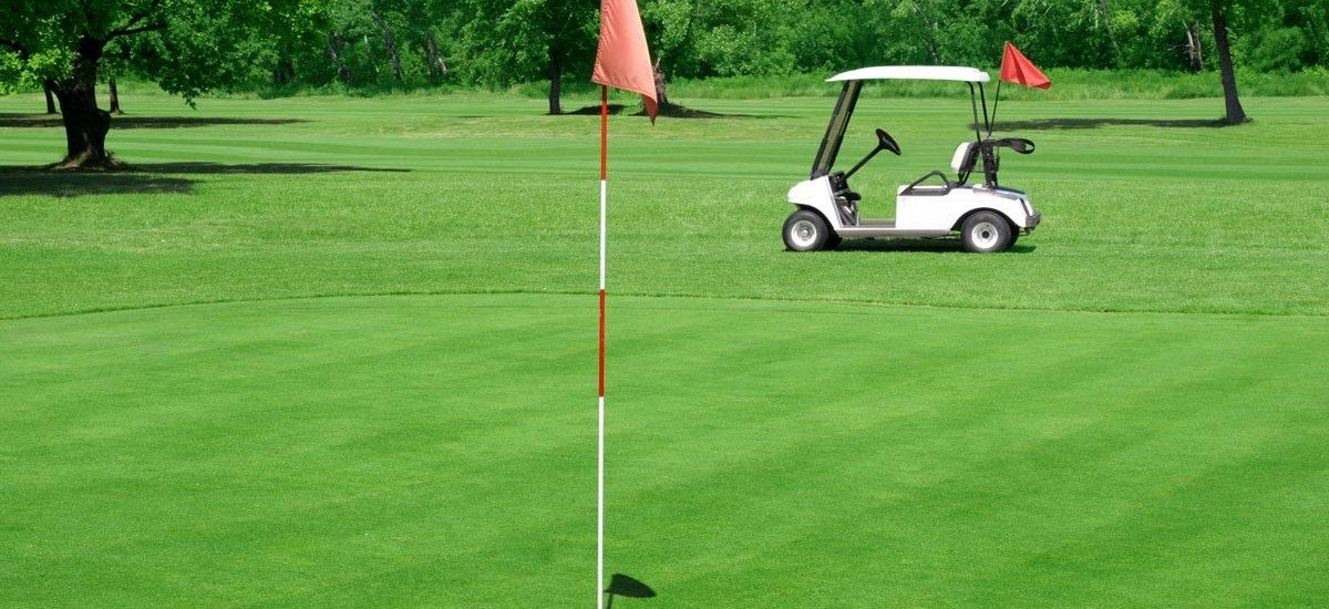 bigstock-Golf-Course-And-Vehicle-1731674